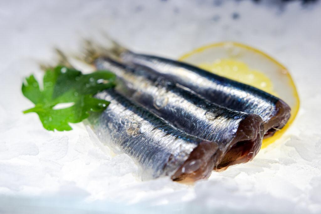 Sardele, sardines