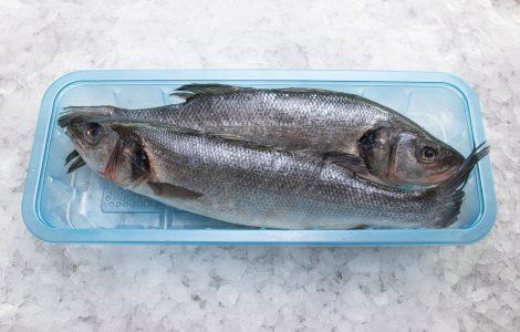 Pakirane ribe, packaged fish